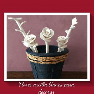 Flores Arcilla Blanca